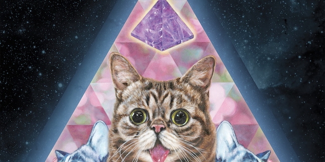 """Lil Bub Shares """"New Gravity"""", Chats With """"Best Show""""/Mountain Goats/Superchunk's Jon Wurster"""